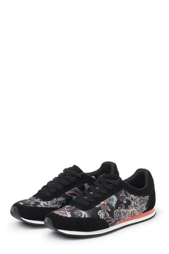 Odd Molly Running Free City Trainer Almost Black